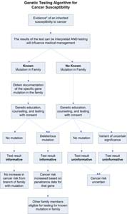 Flowchart showing a multi-step genetic testing algorithm for testing for cancer susceptibility.