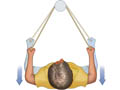 Picture of the retraction scapular exercise